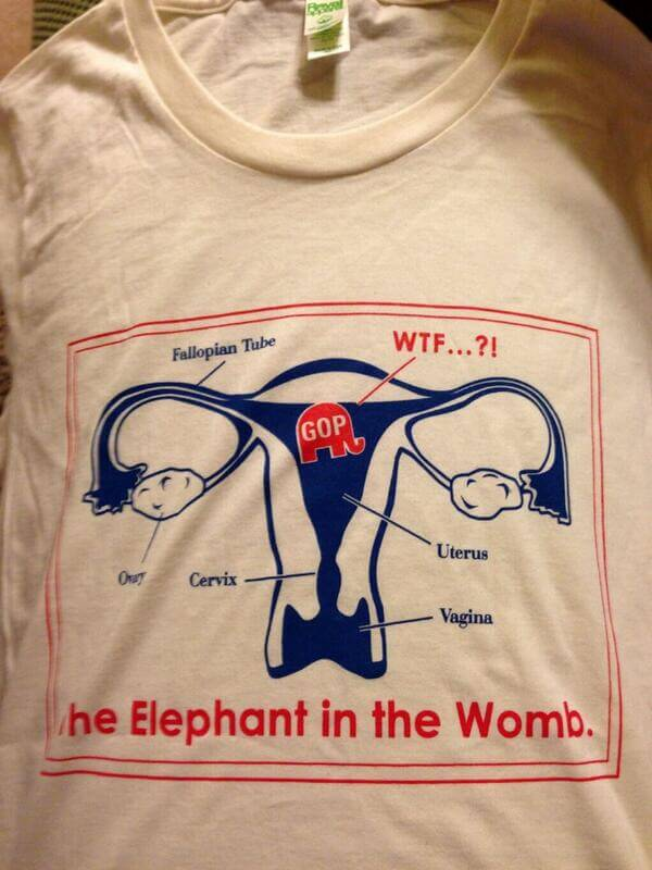 The Elephant in the Womb