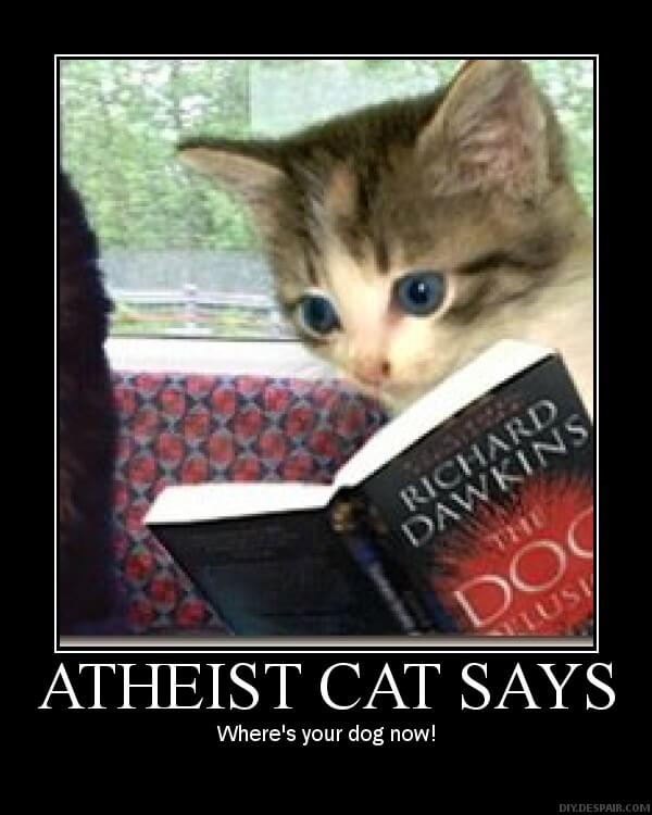 Atheist cat cartoon.