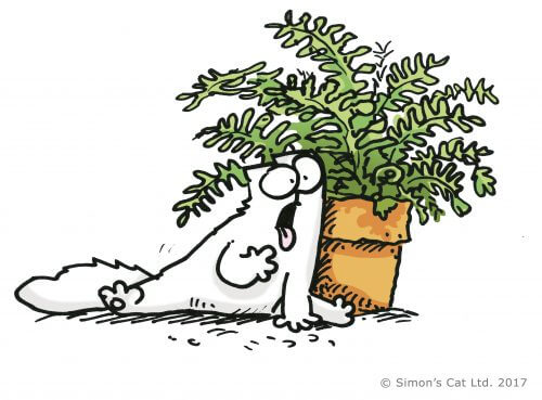 Simon's Cat art work