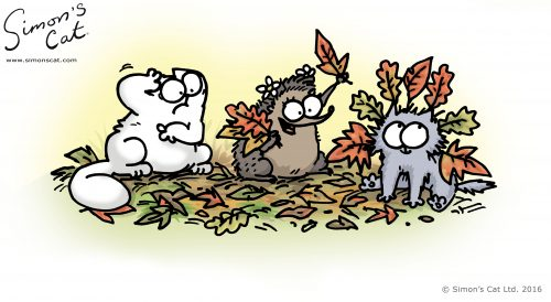 Simon's Cat, Kitten, and a hedgehog.