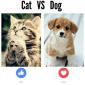 Cats versus Dogs (plus Tweets)