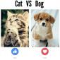 Cats versus Dogs (plus Tweets)