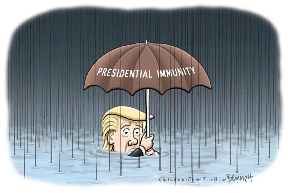 Cartoon Trump Immunity